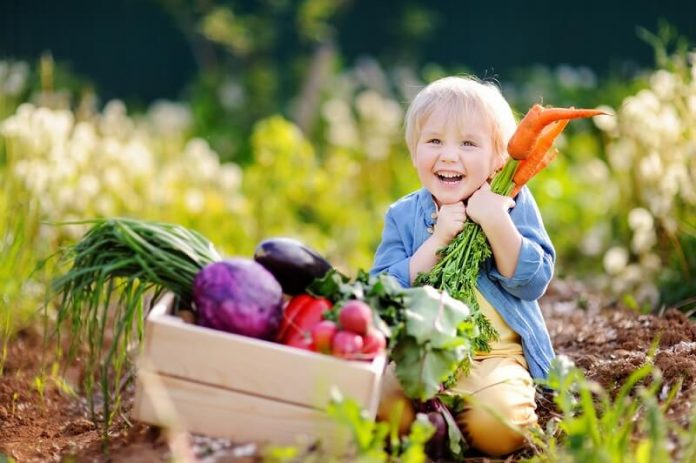 Health benefits of eating foods with the seasons