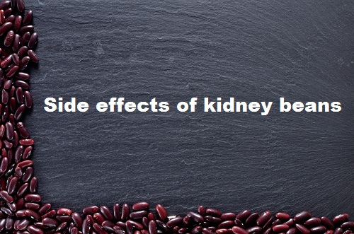 Side effects of kidney beans- stomach issues - Hemagglutinin