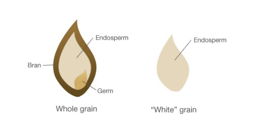 What is the difference between whole and white?